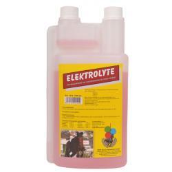 Électrolytes -1 litre- HKM